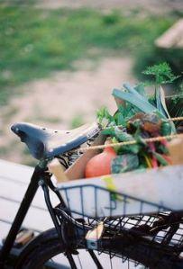 Faire les courses à vélo