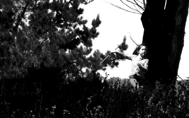 Danser avec les arbres