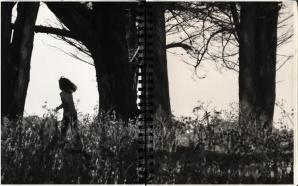 F - Livre d'artiste- la lumière égarée
