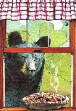 shawn_braley_bear