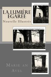 la_lumiere_egaree_cover